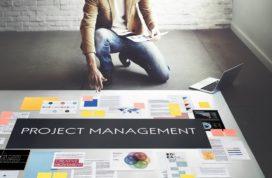 De levensfase van de organisatie en het projectteam