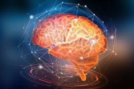 Neurowetenschap 'bewijst' relatie leiderschapsgedrag en prestaties