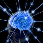 Het veelzijdige brein – Multitasken: niet doen!