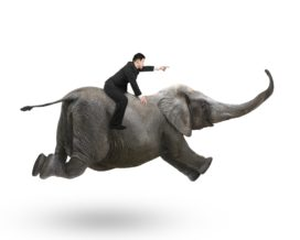 Hoe til je agile ontwikkeling uit boven het pilotniveau?