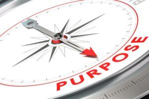 Nationaal Onderzoek Purpose in Organisaties