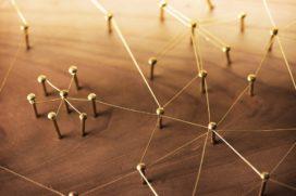 Rosi Dhaenens: Hard werken aan netwerken