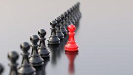 Het gezwam over leiderschap