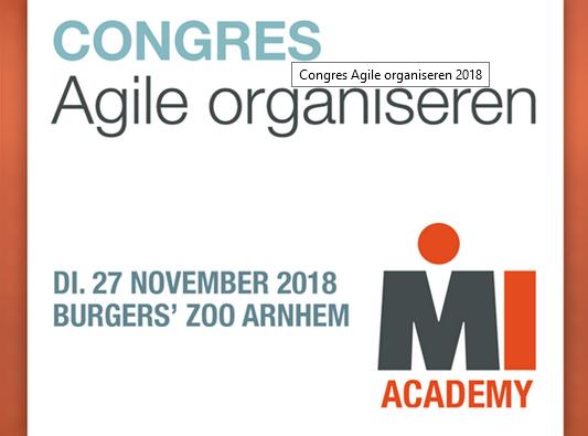 Seminar Agile Organiseren