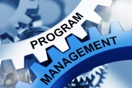Wat kenmerkt het leiderschap van de programmamanager?