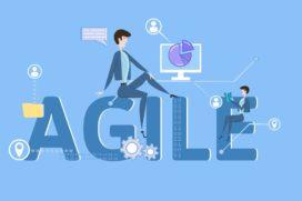 Agile is in het begin erg moeilijk – Video met Rini van Solingen