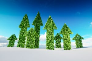 Expeditie duurzaam leiderschap