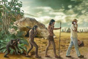 Evolutie: kwaliteitssprong door samenwerking