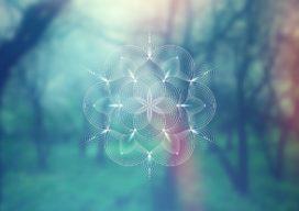 Waarom organisaties een Chief Spiritual Officer nodig hebben