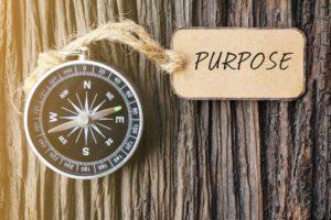 Lange termijn waardecreatie vraagt om Samensturing – geen profit zonder purpose