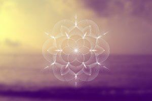 Chief Spiritual Officers zijn de diepe denkers die we nodig hebben