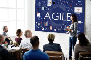 Agile Leiderschap – met video met Rini van Solingen