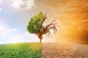 Babbelende klimaatpolitici