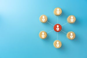 Vier organisatiekenmerken (STMC)