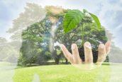 Duurzaam Risicoleiderschap: kansen en risico's van klimaatverandering – winnaar Festival Award