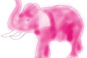Roze olifanten