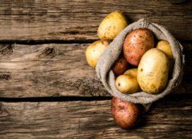 Ambachtelijke eigenheimers: innovatie in de aardappelindustrie