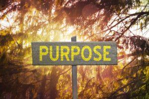 Om de revolutie te winnen is purpose nodig