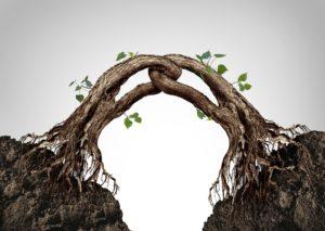 Synergie zorgt voor leven in organisaties
