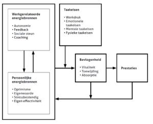 Figuur 6: model van bevlogenheid
