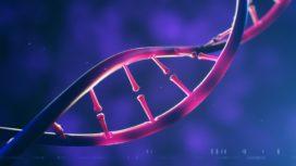 Het DNA van de innovator