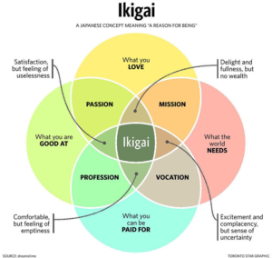 Het Ikigai model