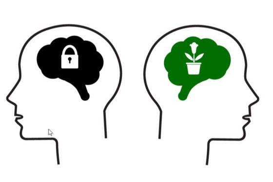 De Zorginstelling Als Lerende Organisatie Management Impact